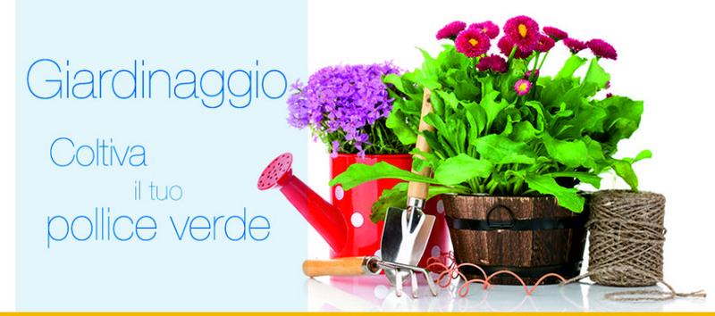 Arredamento E Casalinghi Bergamo.Ingrosso Casalinghi Bergamo Figli Di Pietro Rodeschini Spa Paginesi
