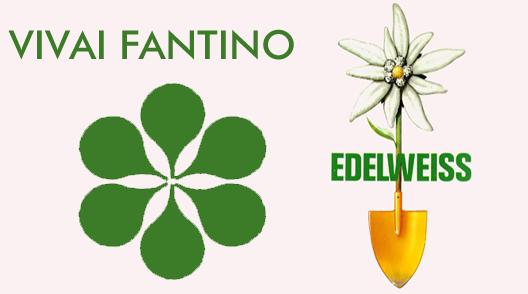 Vivai fantino edelweiss vendita sementi fitofarmaci for Arredo giardino torino